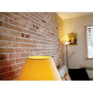 Mattone naturale Il Mattone Mosa Mister Brick per rivestimenti faccia a vista da interni ed esteri